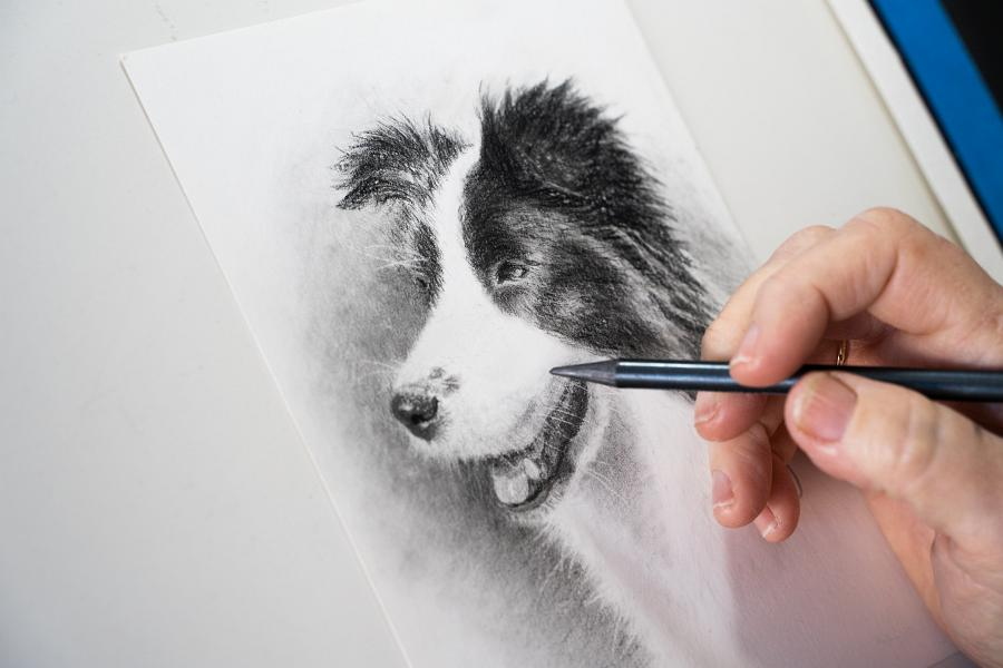The eyes have it – Artist's passion for creating pet portraits