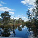 GemLife Highfields - Robyn Ernest - Reflections
